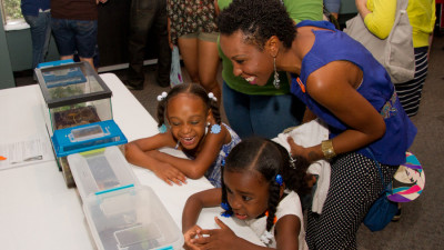 Bug-Fest-at-the-Academy-of-Natural-Sciences-of-Drexel-University-2013-0420